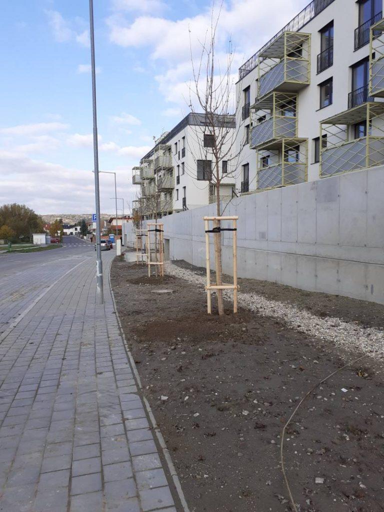 Projekt Kolísky Záhorská Bystrica