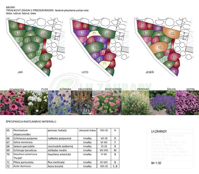 Návrh - trvalkový záhon v predzahrádke - farebné pôsobenie počas celého roka