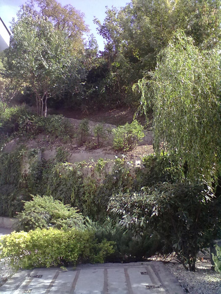 Svah v záhrade