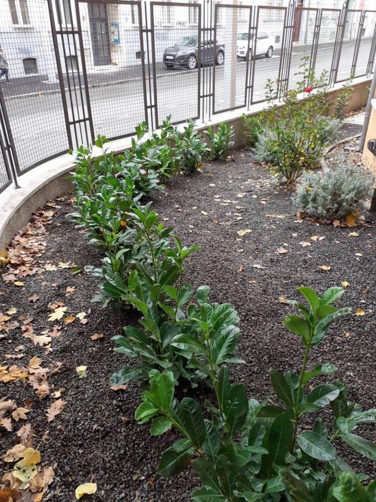 Realizácia záhrad 2020